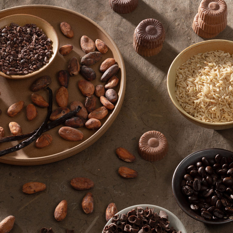 Plates of cocoa beans, cocoa nibs, brown rice, coffee beans and Sjaak's organic chocolate bites